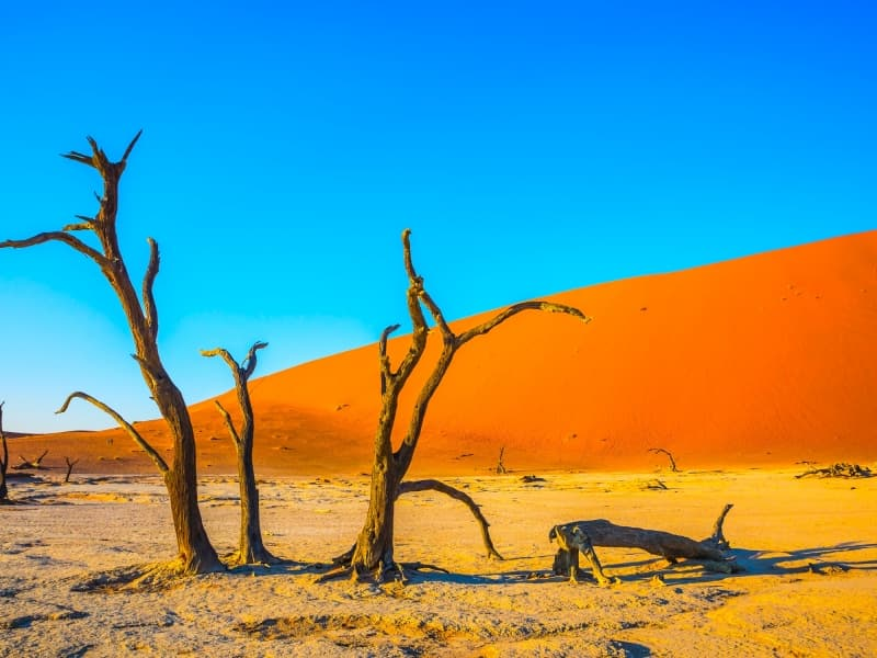 La Namibie, un pays envoûtant d'Afrique australe