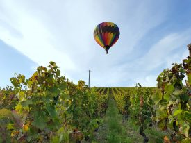 Montgolfière à lyon au milieu des vignes